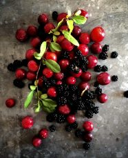 Wild plums and blackberries